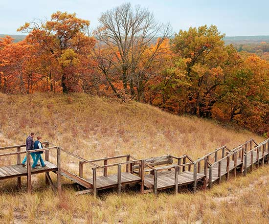 Dunes Gone Wild: Fall Getaway to Indiana Dunes
