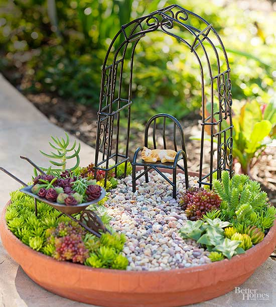 DIY Miniature Succulent Garden