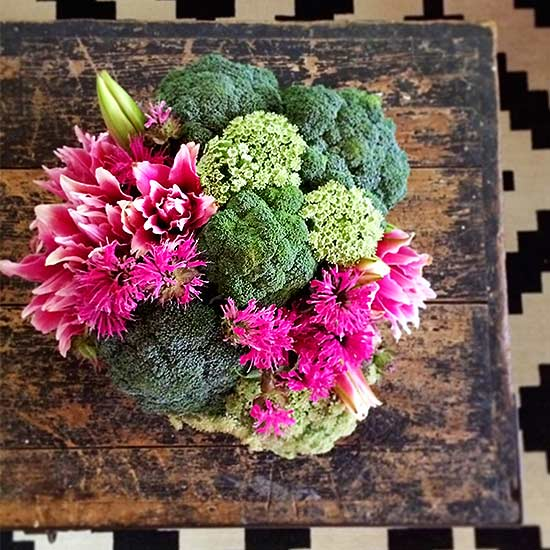 Broccoli Lily And Bee Balm