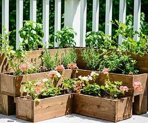 Diy Herb Gardens For Every E