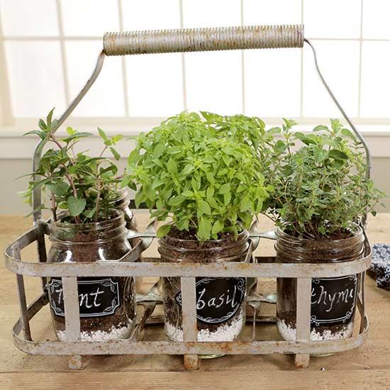Patio Herb Garden Idea: Portable Indoor Herb Garden