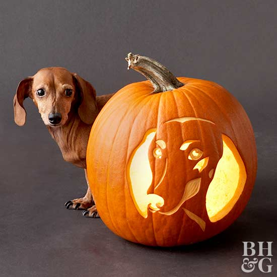 Free Pumpkin-Carving Stencils of Favorite Dog Breeds