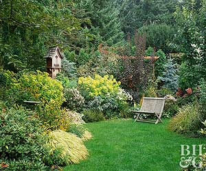 Year-Round Excitement Garden Plan & Easiest Gardens