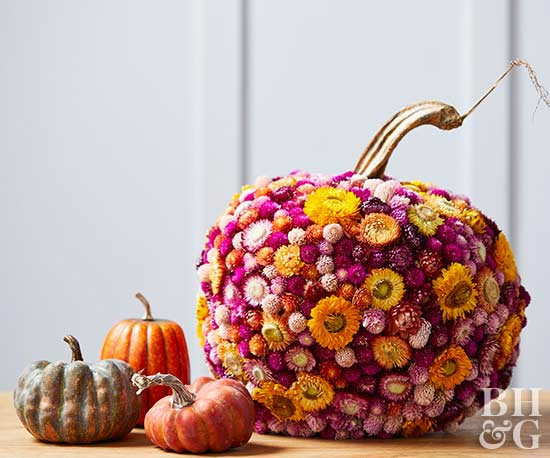 Fresh ideas for pumpkin decorating Flower painted pumpkins