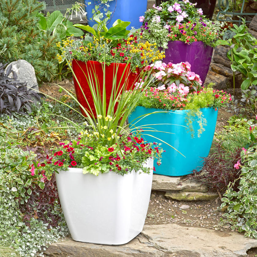 Deal of the Day: Up to 80% Off Gardeners Supply Summer Sale