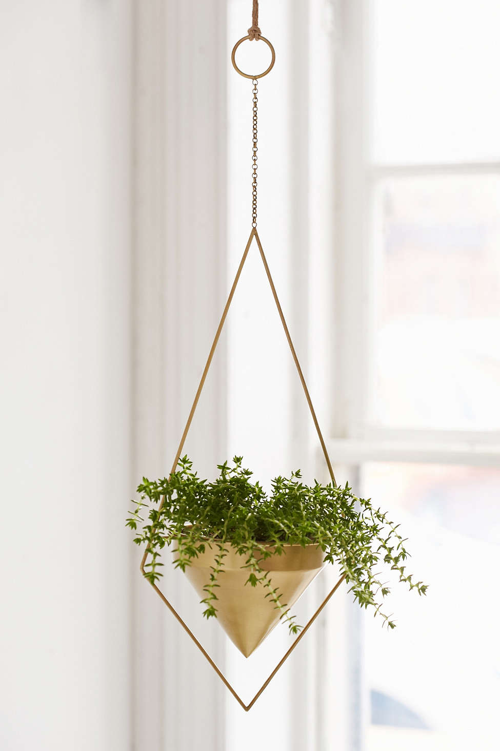 Deal of the Day: Whimsical Hanging Planter -- Just $30