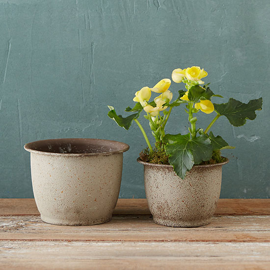 Deal of the Day: 28% Off Terrain's Antiqued Barrel Pots