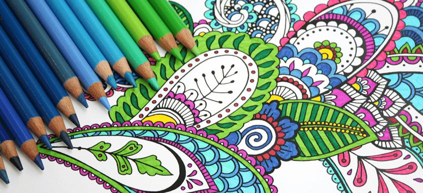 Explore Designs