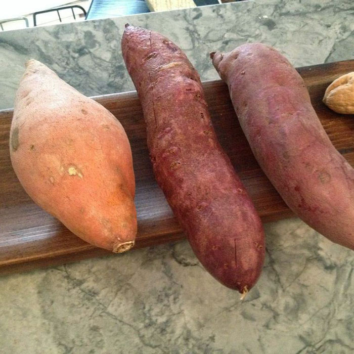 Quick Roasted Sweet Potato with Yogurt, Walnuts, and Cilantro