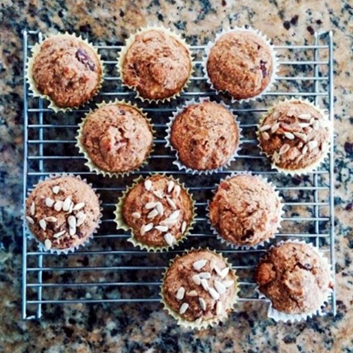 Fruited Yogurt Oat Mini Muffins